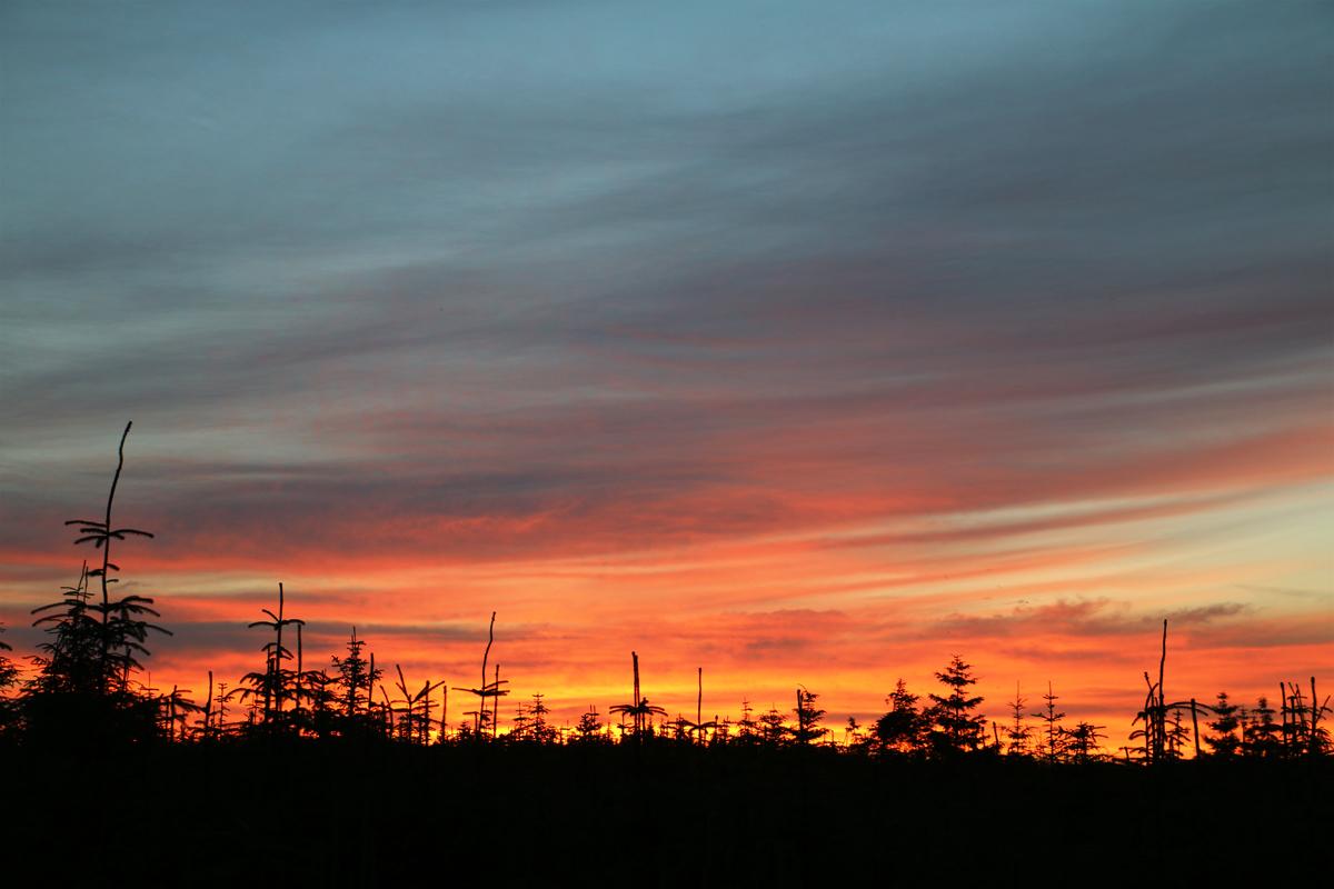 Kielder Observatory Northern Lights
