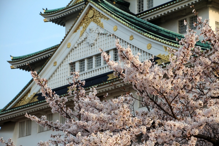 April in Japan - The Importance of Check-In Luggage