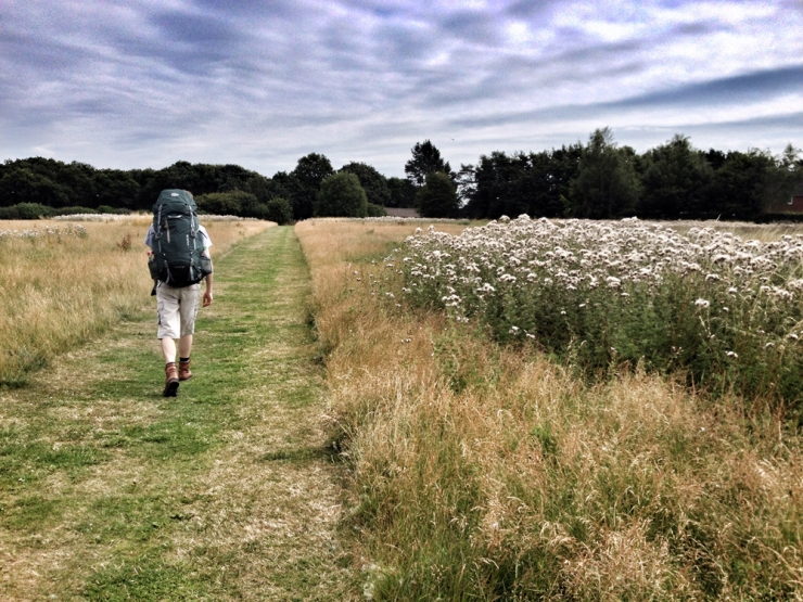 The Ridgeway Walk - From Wallingford to Stokenchurch