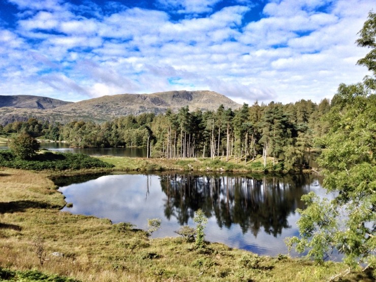 Tarn Hows & Coniston - Lake District 2015