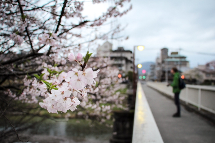 Nakaragi-no-michi