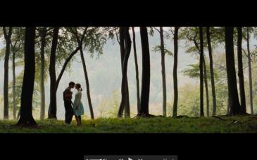 Screen Shot 2018-08-04 at 11.51.23