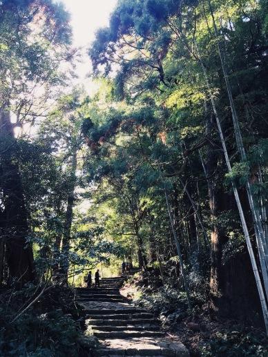 Walking in Japan   20181119 Kumano Kodo